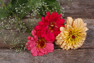 zinnia flowers with gypsophila on the old table