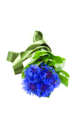 blue corn flowers