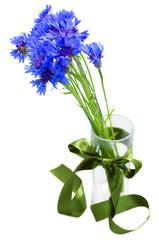 blue corn flowers bouquet in vase