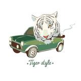 White smoking Tiger - 54338090