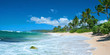Leinwanddruck Bild - Untouched sandy beach with palms trees and azure ocean in backgr
