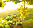 Weinflaschen in einer Holzkiste im Weinberg