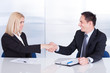Two Businesspeople Shaking Hand