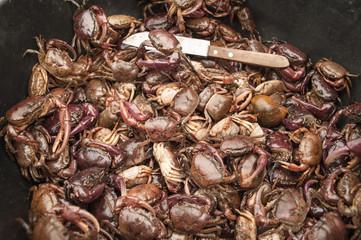 creek crab