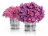 vases with bouquets of hydrangea
