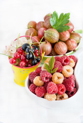 Fresh garden berries on light background