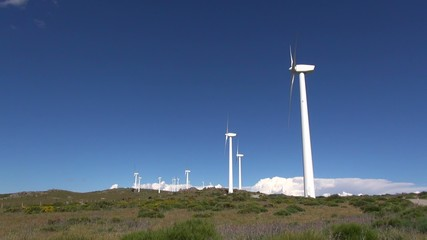 white turbines on green meadow