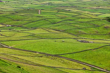 Rural Landscape, Terceira Island, Azores