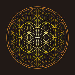 Gold Flower of Life