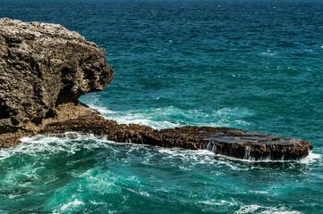 Barbados Nature