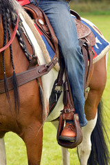 A cowboy leg wearing jeans in a stirrup
