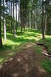 sentiero attorno al lago di Braies