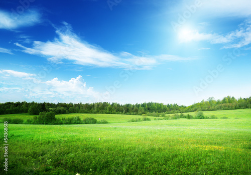 canvas print picture field of grass and perfect sky