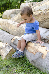 Child on wood log