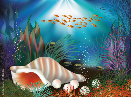 Underwater world card with seashell and pearls, vector