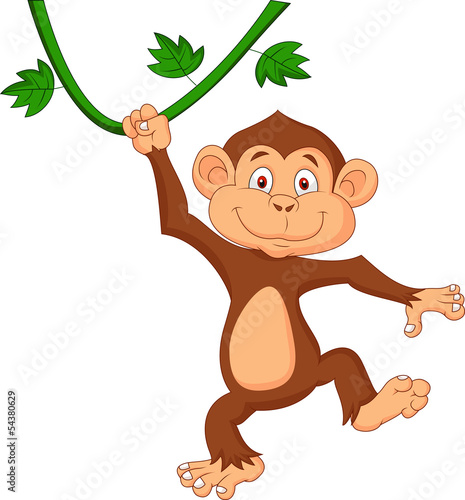 Cute monkey hanging