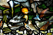 Birds in stained glass - 54387493