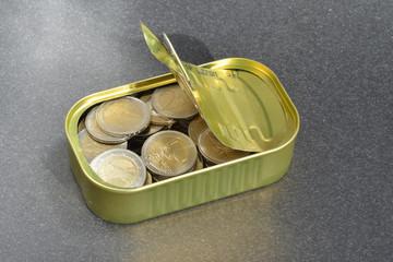 Sardinenbüchse, Erspartes, Sparen, Reserven, Euro, Dose, Büchse