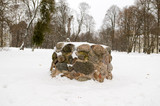 ancient pagan stone altar eternal fire snow winter poster