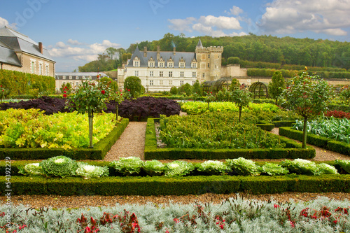 garden in Villandry chateau, France