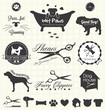 Vector Set: Pet Grooming Labels - 54395006