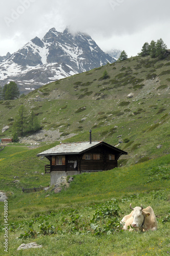 Village of Findeln  beneath the Gabelhorn in the Swiss Alps