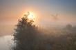 morning sunshine and windmill in dense fog