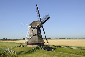 Goliath mill