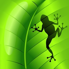 Frog Shape on Green Leaf-Rana sul Foglia Verde-Vector