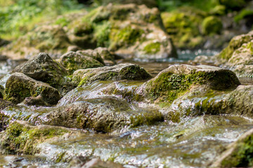 Creek closeup - peaceful background
