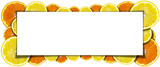 Oranges and Lemons Banner