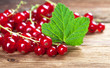 Red currants with leaf on wood