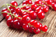 Red currants on wood