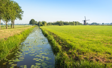 Typical Dutch polder landscape with an old windmill