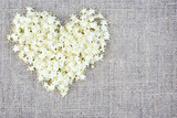Heart from white flowers on sackcloth