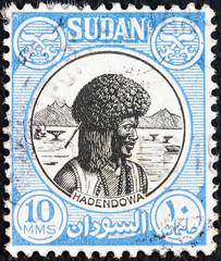 Hadendowa nomad (Sudan 1951)