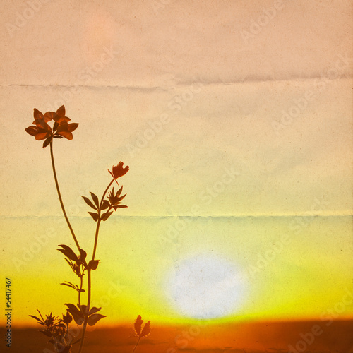 Golden Sunlight background