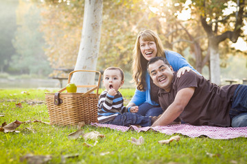 Active Mixed Race Ethnic Family Having a Picnic In Park