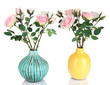 Beautiful pink and white roses in vases isolated on white