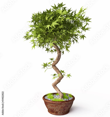 Decorative Houseplant in 3d