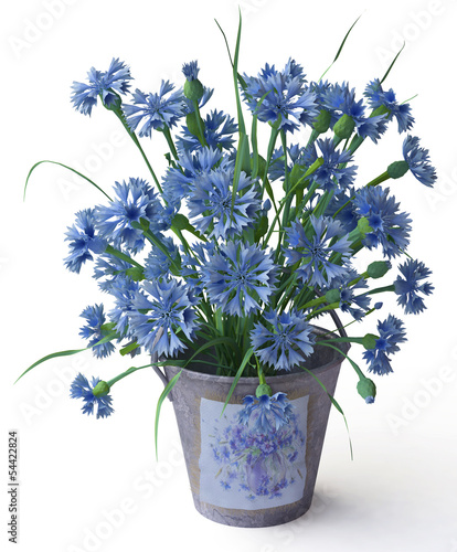 3D Cornflowers in Bucket