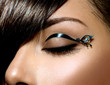 Fashion Make up. Stylish Female Eye With Black Liner makeup
