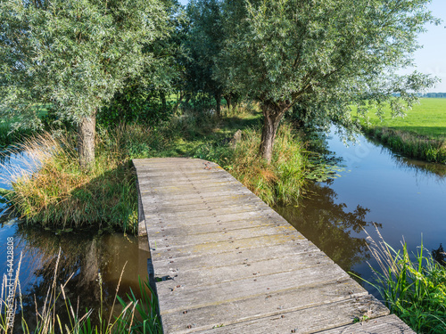 Wooden bridge in a polder landscape