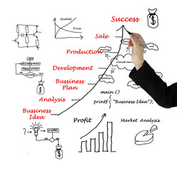 Diagram showing development of business idea and business-relate
