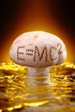 Mushroom Energy Enhancer poster