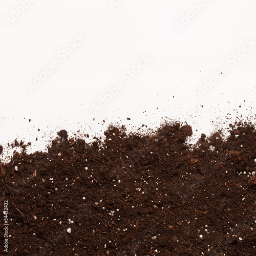 Soil on the white