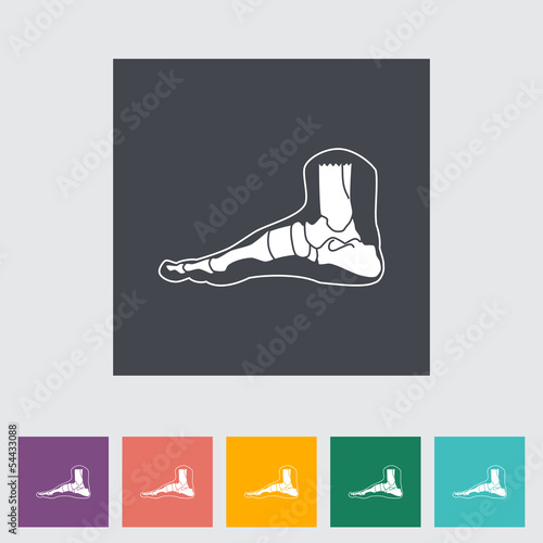 Foot anatomy flat icon.