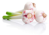 Three bulbs of fresh garlic isolated on white background