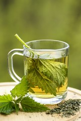 Nettle tea in glass. Fresh and dry stinging nettle