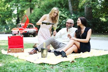 junge Gruppe beim Picknick